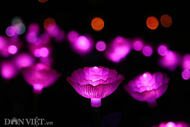 """Hình ảnh """"khu vườn ánh sáng"""" ở Hà Nội hút đông bạn trẻ đến check-in - 4"""