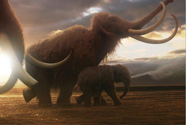 Bước đột phá giúp hồi sinh voi ma mút thời tiền sử trên Trái đất - 1