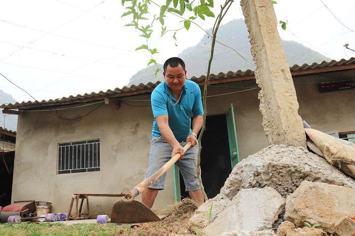 Trồng cỏ nuôi con uống nước lã, mỗi năm kiếm đôi trăm triệu đồng - 4