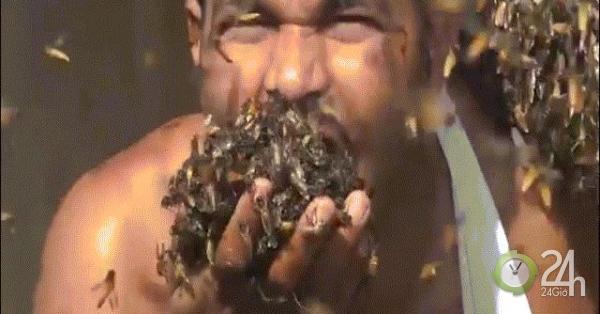Video: Dị nhân nhét cả mớ ong vào miệng khi lấy mật