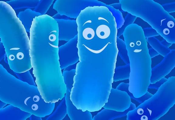 Lợi khuẩn Bifido – chìa khóa vàng giúp đại tràng khỏe mạnh - 1