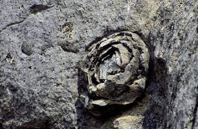 Cảnh tượng đá nở hoa có 1-0-2 tại Trung Quốc - 4