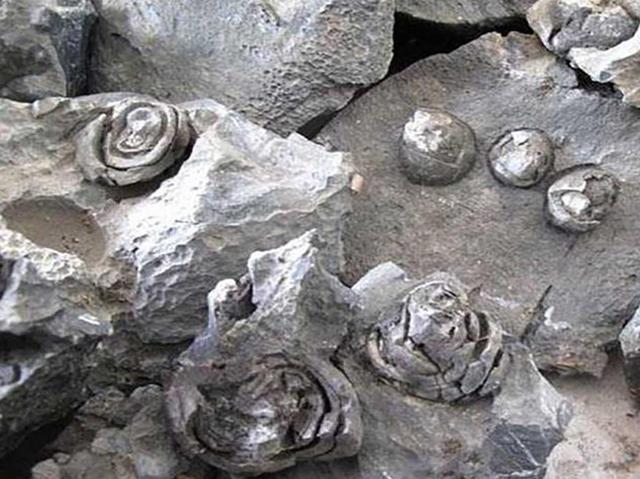 Cảnh tượng đá nở hoa có 1-0-2 tại Trung Quốc - 3