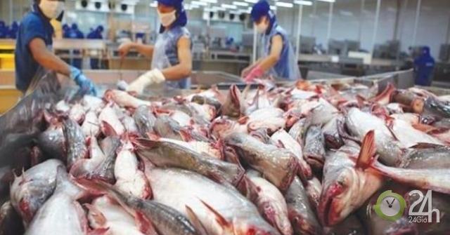 Người Mexico thích ăn cá tra, basa Việt Nam