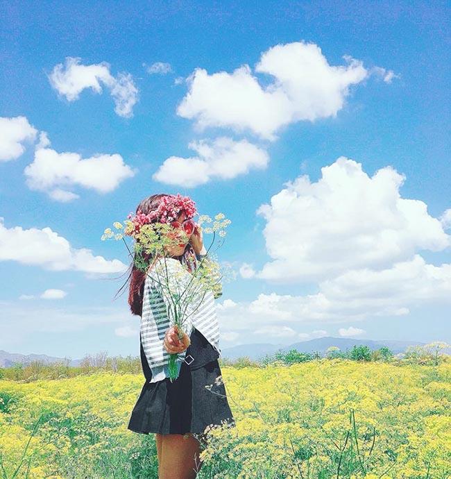 """Check-in liền tay có ngay ảnh đẹp tại """"cánh đồng hoa thì là"""" Ninh Thuận - 1"""