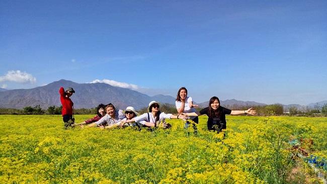 """Check-in liền tay có ngay ảnh đẹp tại """"cánh đồng hoa thì là"""" Ninh Thuận - 5"""