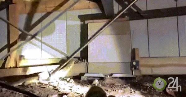 Kinh ngạc khi phát hiện 45 con rắn cực độc sống bên dưới sàn nhà