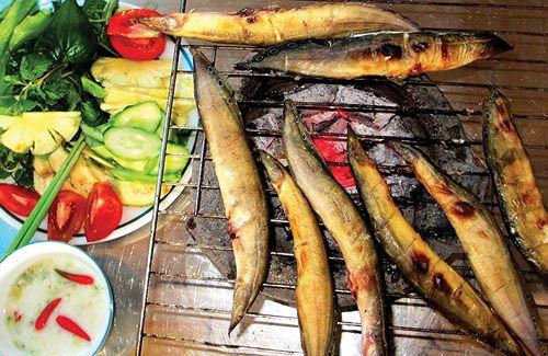 Món ăn từ cá 'tốt hơn Viagra' cho quý ông - 2