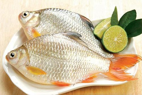 Món ăn từ cá 'tốt hơn Viagra' cho quý ông - 3