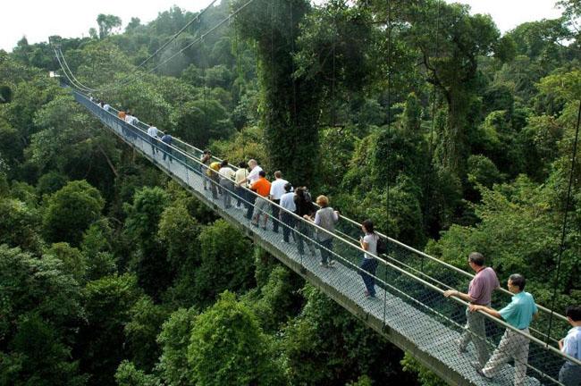 """9 điểm du lịch miễn phí tuyệt đẹp ở Singapore, không biết thì """"tiếc đứt ruột"""" - 9"""