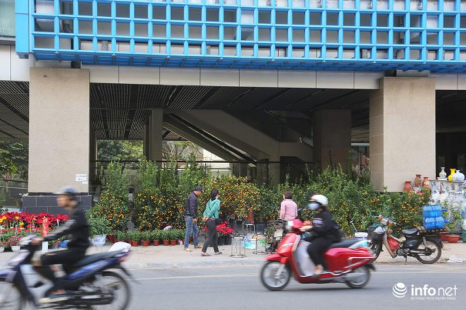 Vỉa hè, sân nhà ga đường sắt trên cao Cát Linh - Hà Đông thành chợ hoa Tết - 2