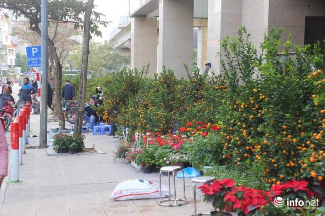Vỉa hè, sân nhà ga đường sắt trên cao Cát Linh - Hà Đông thành chợ hoa Tết - 3