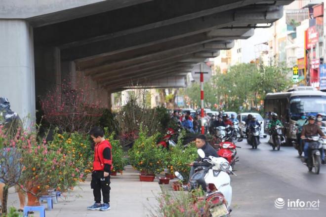 Vỉa hè, sân nhà ga đường sắt trên cao Cát Linh - Hà Đông thành chợ hoa Tết - 8
