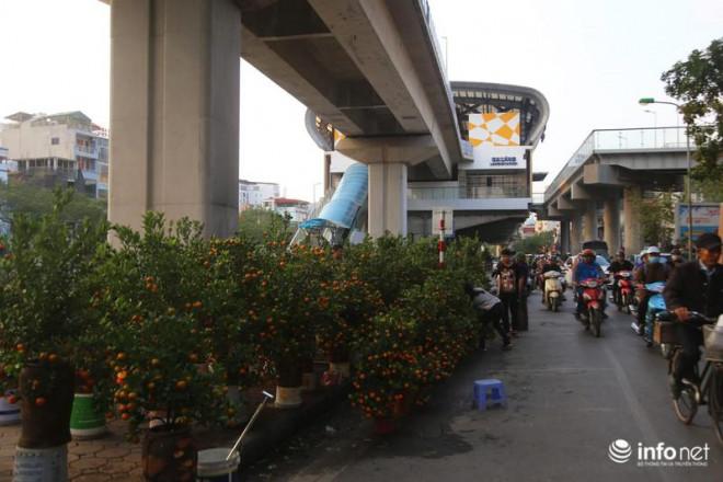 Vỉa hè, sân nhà ga đường sắt trên cao Cát Linh - Hà Đông thành chợ hoa Tết - 12