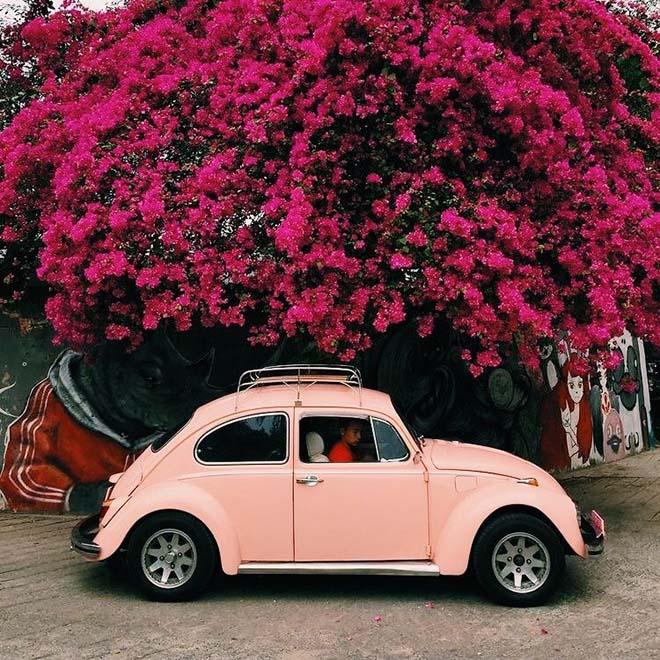 Chọn màu xe ô tô hợp phong thủy cho ngày đầu du xuân may mắn - 1