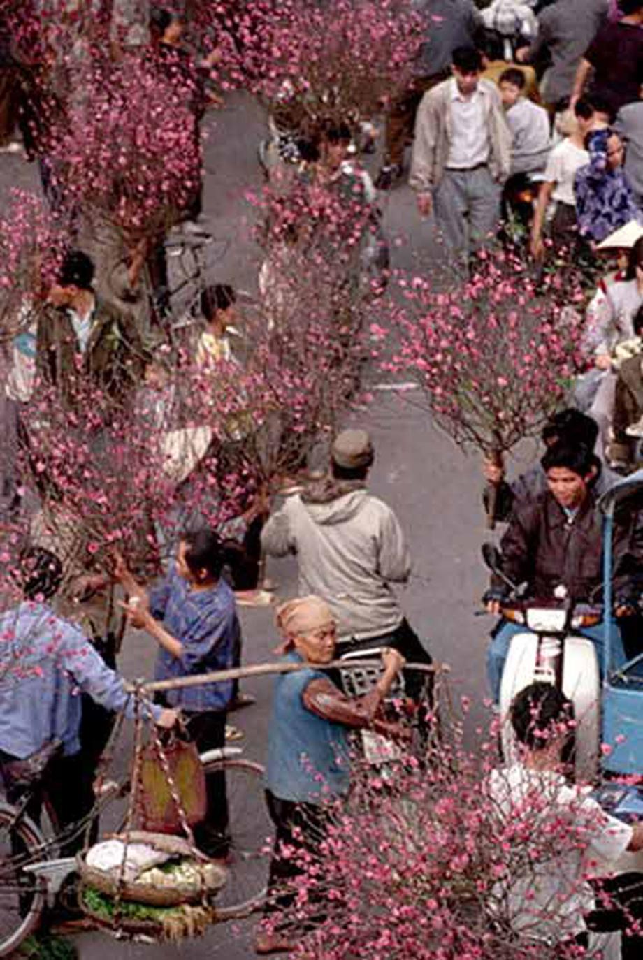 Cận Tết, bồi hồi ngắm lại ảnh chợ hoa Hàng Lược xưa - 3