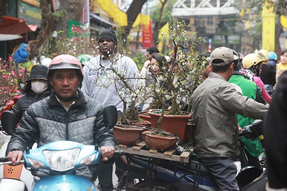 Cận Tết, bồi hồi ngắm lại ảnh chợ hoa Hàng Lược xưa - 10