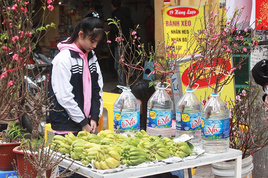 Cận Tết, bồi hồi ngắm lại ảnh chợ hoa Hàng Lược xưa - 9