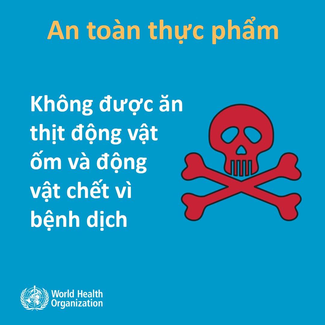 Khuyến nghị chính thức của WHO về cách phòng tránh lây nhiễm virus Corona - 6