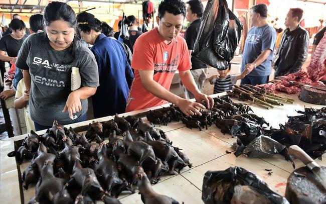 Ánh ảnh bởi Corona, chợ chuyên bán động vật hoang dã dừng buôn rắn, bán dơi - 1