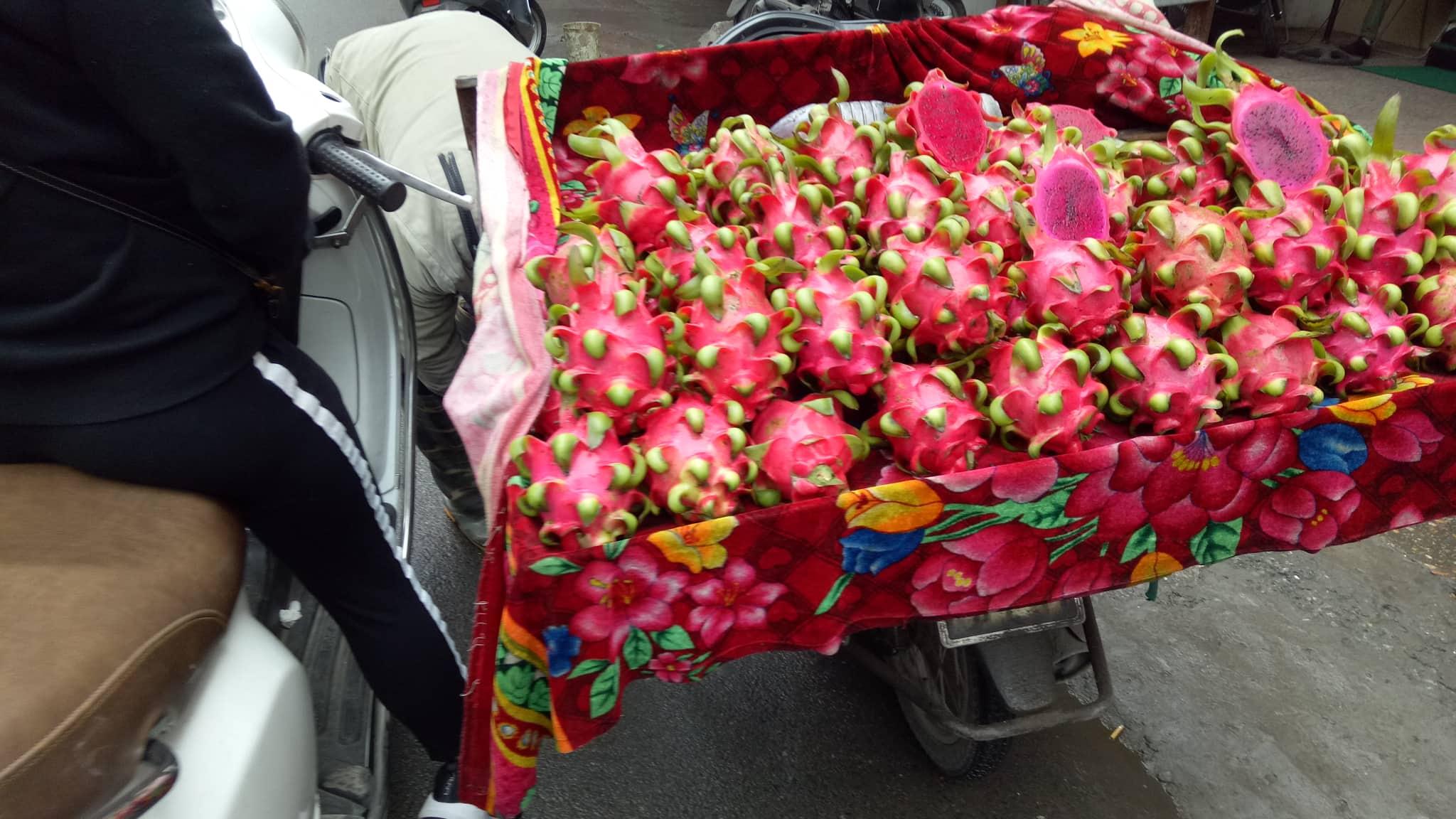 """Thanh long thời Corona: Nhà nông """"khóc"""" vì rẻ, chợ truyền thống vẫn bán giá """"trên trời"""" - 3"""