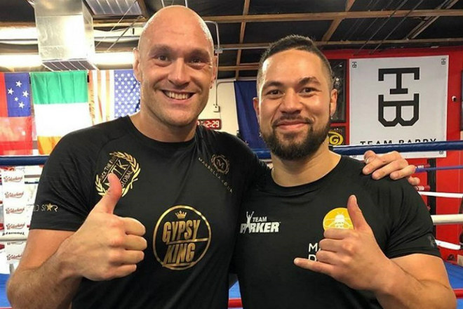 Siêu đại chiến boxing Wilder – Fury tập 2: Cựu vô địch dự đoán kết cục sốc