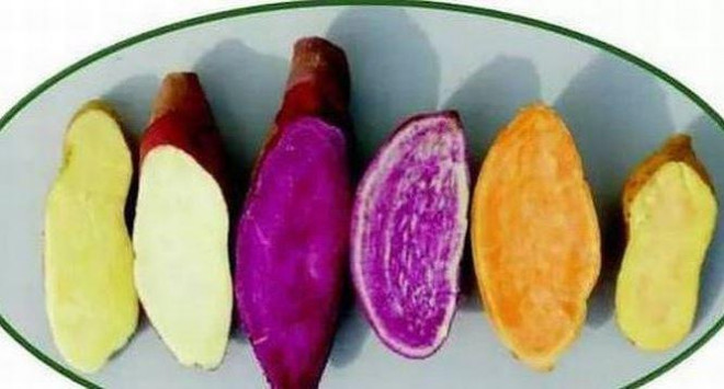 Những loại rau củ nhiều vitamin C hơn cả cam chanh, tăng sức chống dịch - 6