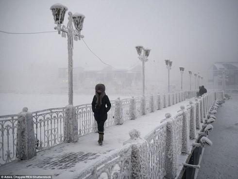 Ở thị trấn lạnh nhất thế giới, người dân sinh sống thế nào? - 3