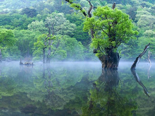 Những điểm đến đẹp nhất Hàn Quốc, hết Covid-19 phải xách balo đi ngay - 3