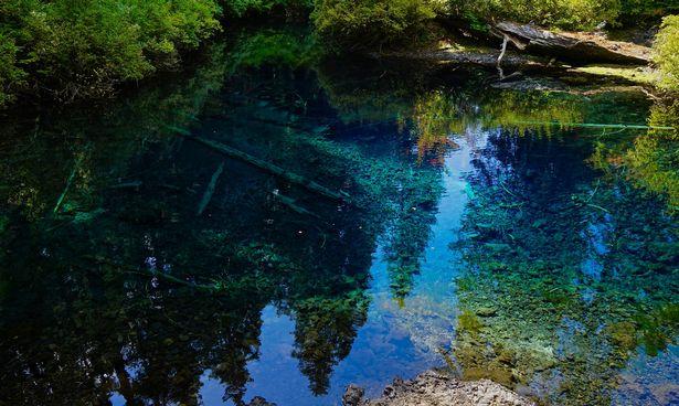 Khám phá hồ nước ẩn chứa cả khu rừng cổ xưa - 3