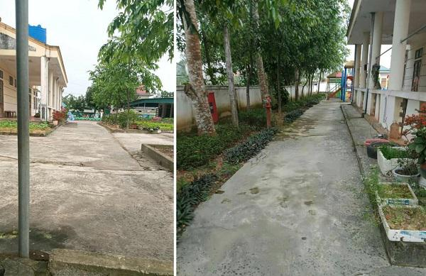 Muôn hoa khoe sắc trong khu cách ly công dân ở Hà Tĩnh - 7