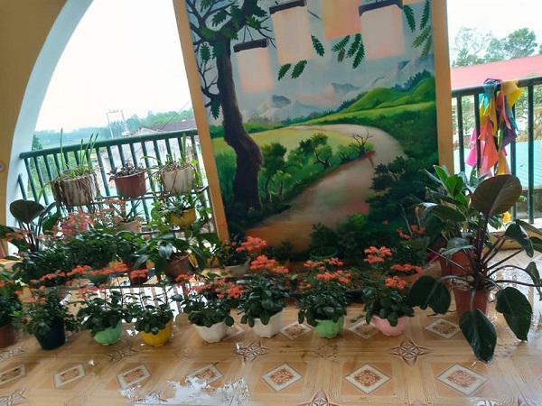 Muôn hoa khoe sắc trong khu cách ly công dân ở Hà Tĩnh - 4