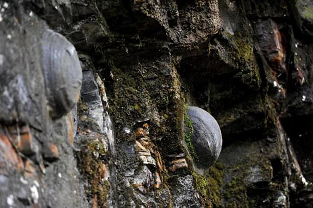 """Kỳ lạ vách đá cứ 30 năm """"đẻ trứng"""" 1 lần - hình ảnh 5"""