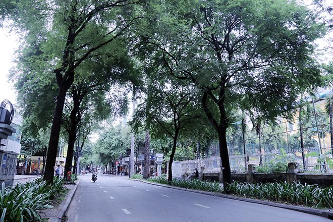Lặng ngắm một Sài Gòn rất khác, không ồn ã trong sáng đầu năm mới - hình ảnh 1