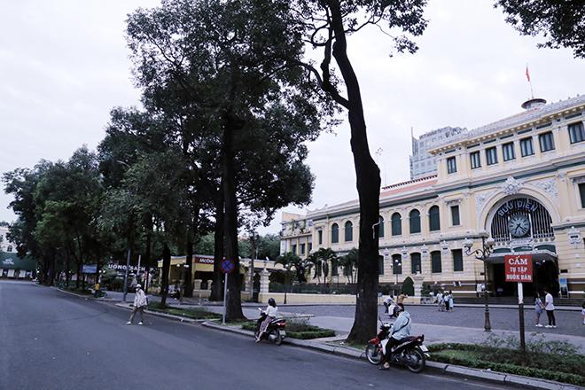 Lặng ngắm một Sài Gòn rất khác, không ồn ã trong sáng đầu năm mới - hình ảnh 11