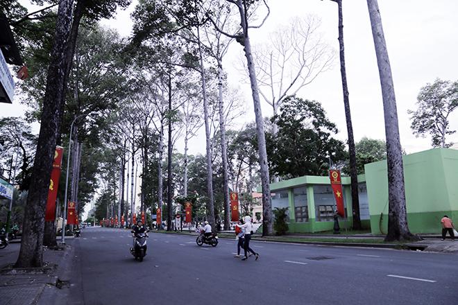 Lặng ngắm một Sài Gòn rất khác, không ồn ã trong sáng đầu năm mới - hình ảnh 4