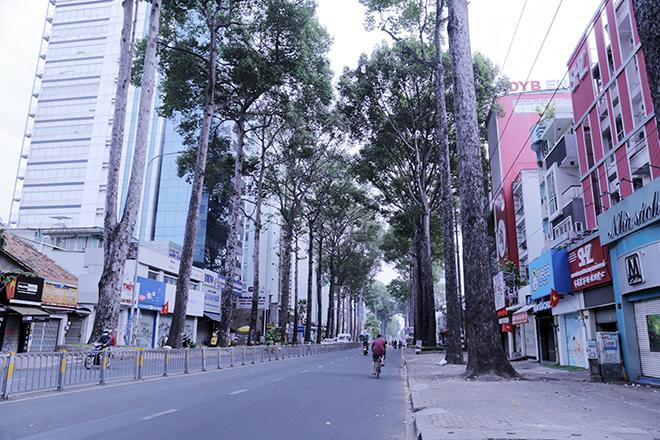 Lặng ngắm một Sài Gòn rất khác, không ồn ã trong sáng đầu năm mới - hình ảnh 6