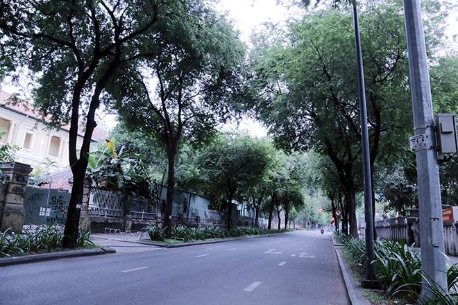 Lặng ngắm một Sài Gòn rất khác, không ồn ã trong sáng đầu năm mới - hình ảnh 8