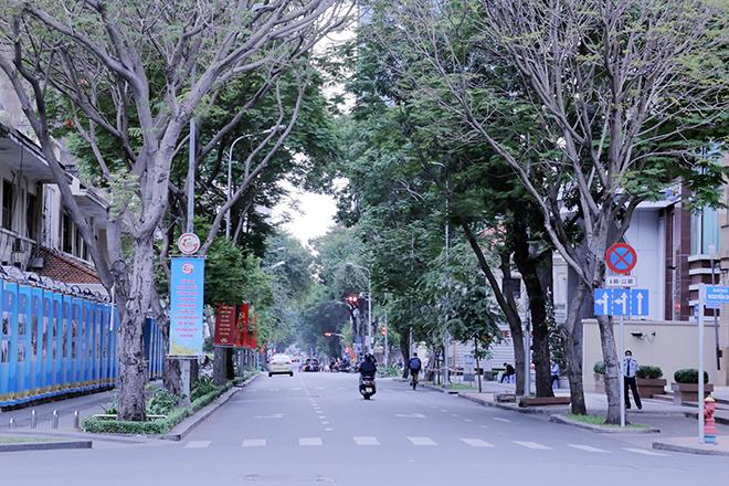 Lặng ngắm một Sài Gòn rất khác, không ồn ã trong sáng đầu năm mới - hình ảnh 9
