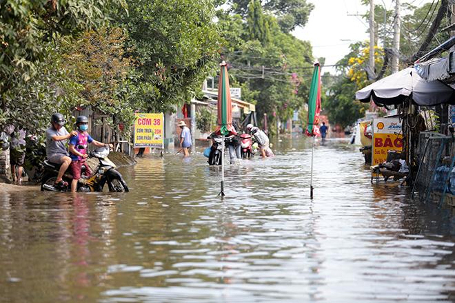 """Đường ở TP Thủ Đức ngập cả ngày, dân """"bơi"""" trong nước bẩn dù trời không mưa - hình ảnh 14"""