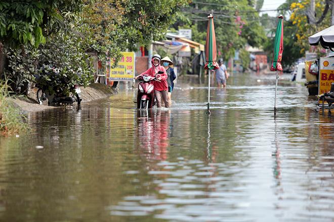 """Đường ở TP Thủ Đức ngập cả ngày, dân """"bơi"""" trong nước bẩn dù trời không mưa - hình ảnh 6"""