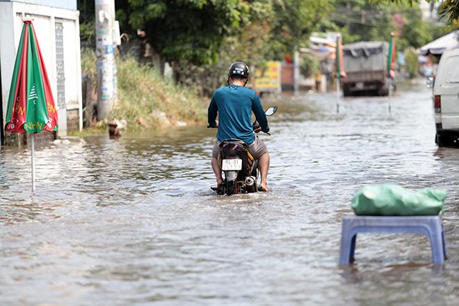 """Đường ở TP Thủ Đức ngập cả ngày, dân """"bơi"""" trong nước bẩn dù trời không mưa - hình ảnh 7"""