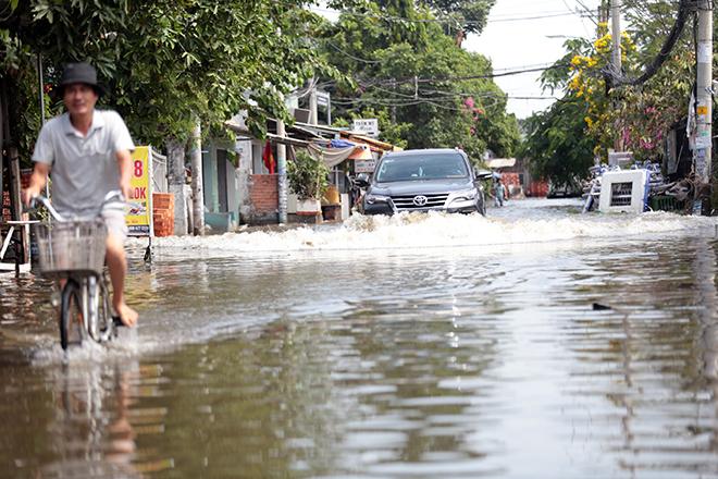 """Đường ở TP Thủ Đức ngập cả ngày, dân """"bơi"""" trong nước bẩn dù trời không mưa - hình ảnh 9"""