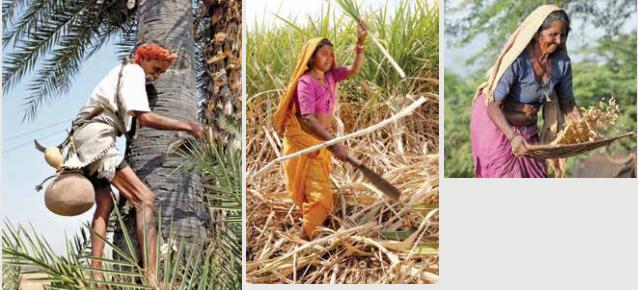 Khám phá điều thú vị ở những bộ lạc cổ xưa nhất Ấn Độ - hình ảnh 1