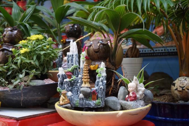 Độc đáo bonsai dừa tạo hình con trâu đón Tết Tân Sửu 2021 - 10