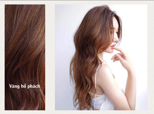 30 Màu tóc đẹp 2021 phù hợp với mọi làn da dẫn đầu xu hướng hiện nay - hình ảnh 23