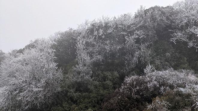 Nhiệt độ xuống dưới 0 độ C, băng giá phủ trắng nhiều nơi trong đợt rét khốc liệt ở miền Bắc - hình ảnh 1