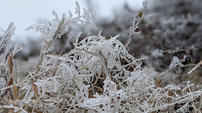 Nhiệt độ xuống dưới 0 độ C, băng giá phủ trắng nhiều nơi trong đợt rét khốc liệt ở miền Bắc - hình ảnh 10