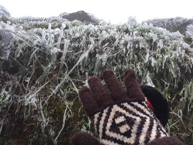 Nhiệt độ xuống dưới 0 độ C, băng giá phủ trắng nhiều nơi trong đợt rét khốc liệt ở miền Bắc - hình ảnh 11