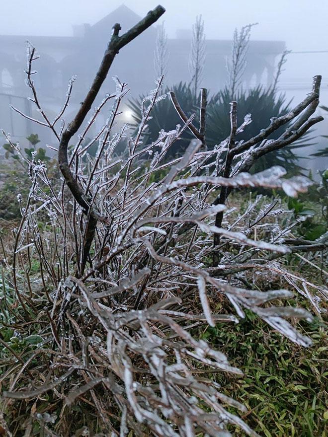 Nhiệt độ xuống dưới 0 độ C, băng giá phủ trắng nhiều nơi trong đợt rét khốc liệt ở miền Bắc - hình ảnh 13